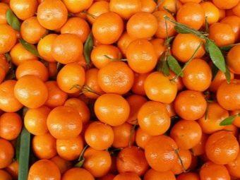 Варенье из мандаринов (40 фото): рецепт десерта дольками с кожурой пошагово, как приготовить джем