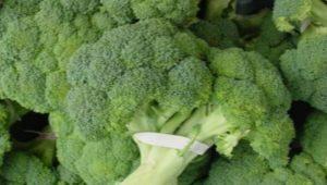 Брокколи: состав, калорийность и особенности приготовления