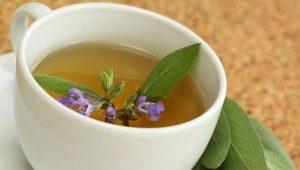 Чай с шалфеем: как заварить и как пить?