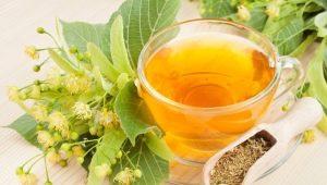 Липовый чай: свойства и особенности употребления