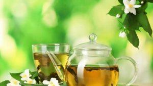 Жасминовый чай: особенности и применение
