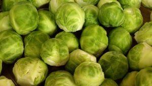 Брюссельская капуста: что содержит, чем полезна и как употреблять с пользой для здоровья?