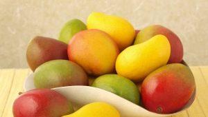 Дозревание манго в домашних условиях