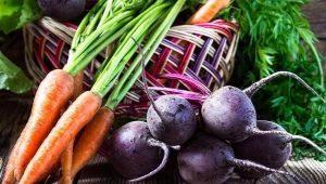 Какую культуру можно сажать после моркови?