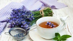 Лавандовый чай: полезные свойства и рецепты ароматного напитка