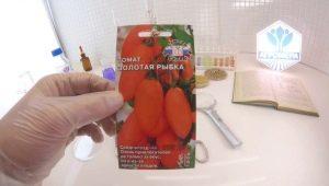 Особенности и характеристика томатов «Золотая рыбка»