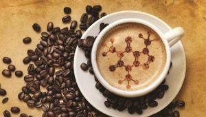 Состав кофе и как он влияет на организм?