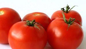 Томаты «Яблонька России»: описание, урожайность, выращивание