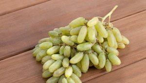 Виноград «Дамские пальчики»: особенности и выращивание