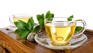 Зеленый чай: состав, свойства для организма человека, польза и вред