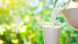 Чем отличается пастеризованное молоко от стерилизованного?