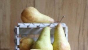 Груша «Аббат Фетель»: особенности сорта и агротехника