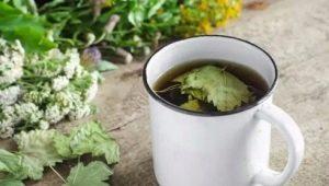 Как ферментировать листья смородины?