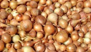 Как подготовить лук-севок к посадке весной?