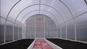 Как подготовить теплицу к посадке томатов весной?