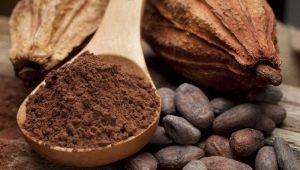 Какао-порошок: советы по выбору и приготовлению