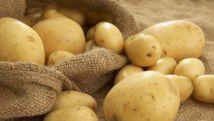 Картофель: химический состав и калорийность