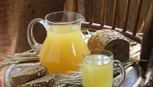 Квас из овса: домашние рецепты, состав и польза старинного напитка
