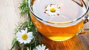 Можно ли пить ромашковый чай во время беременности?