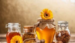 Мёд: виды и область применения