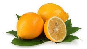Отличительные черты и свойства узбекских лимонов