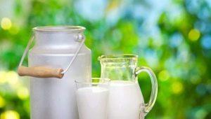 Популярные способы проверить молоко на натуральность и качество