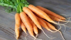 Способы и схемы посадки моркови