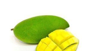 Зеленое манго: сорта и их применение
