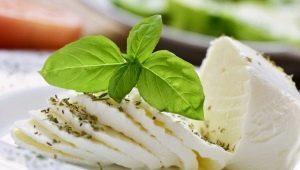 Диетический сыр: сорта, калорийность и рецепты для диеты