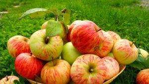 Хранение яблок: как и где держать свежие фрукты в домашних условиях?