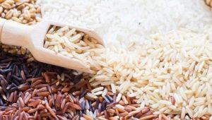 Как и где растет рис?