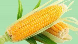 Как приготовить кукурузу в мультиварке?