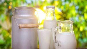 Какие виды молока бывают и что лучше выбрать?