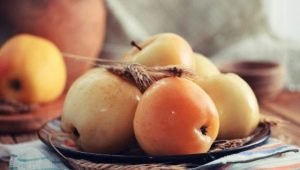 Моченые яблоки: приготовление в домашних условиях, польза и вред