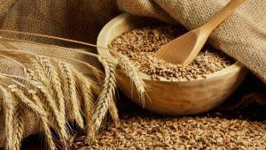 Мягкая пшеница: характеристика и отличия от твердых сортов