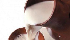 Парное молоко: что такое, польза, вред и особенности употребления