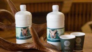 Польза и вред лосиного молока