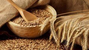 Разновидности круп из пшеницы