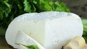 Рецепты приготовления Брынзы из козьего молока
