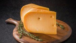 Сыр Гауда: особенности, калорийность и приготовление в домашних условиях
