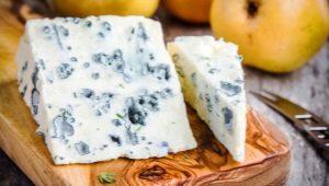 Сыр с плесенью: польза и вред, особенности выбора и употребления