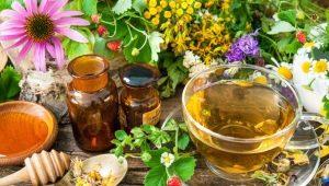 Желудочный чай: особенности и правила применения