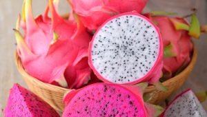 Драконий фрукт (питайя, питахайя, глаз дракона): что это за плод и как правильно его выбрать?