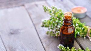 Эфирное масло чабреца: свойства и применение