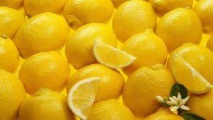 Лимон при простуде: польза и вред, эффективные рецепты