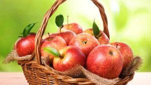 Яблоки: состав и свойства фрукта, калорийность и применение плодов