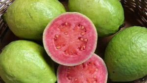 Какие фрукты зеленого цвета бывают?