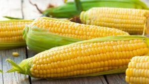 Польза и вред кукурузы, ее пищевая и энергетическая ценность