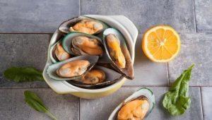 Состав, пищевая ценность и калорийность мидий
