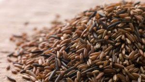 Бурый рис для похудения: польза и вред, особенности диеты и рецепты блюд